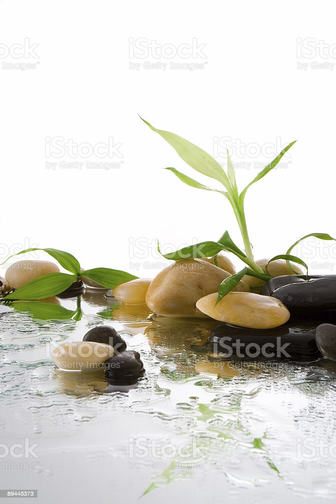 bamboo and water royalty-free stock photo