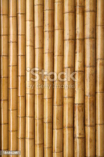 Dried bamboo background