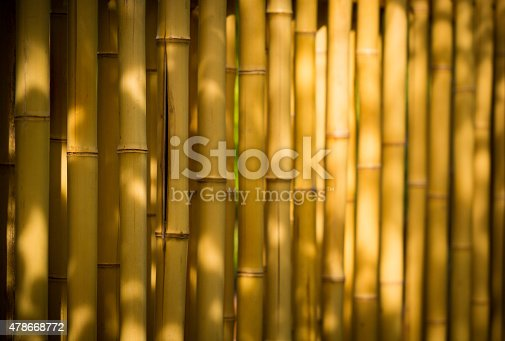 istock bamboo background 478668772