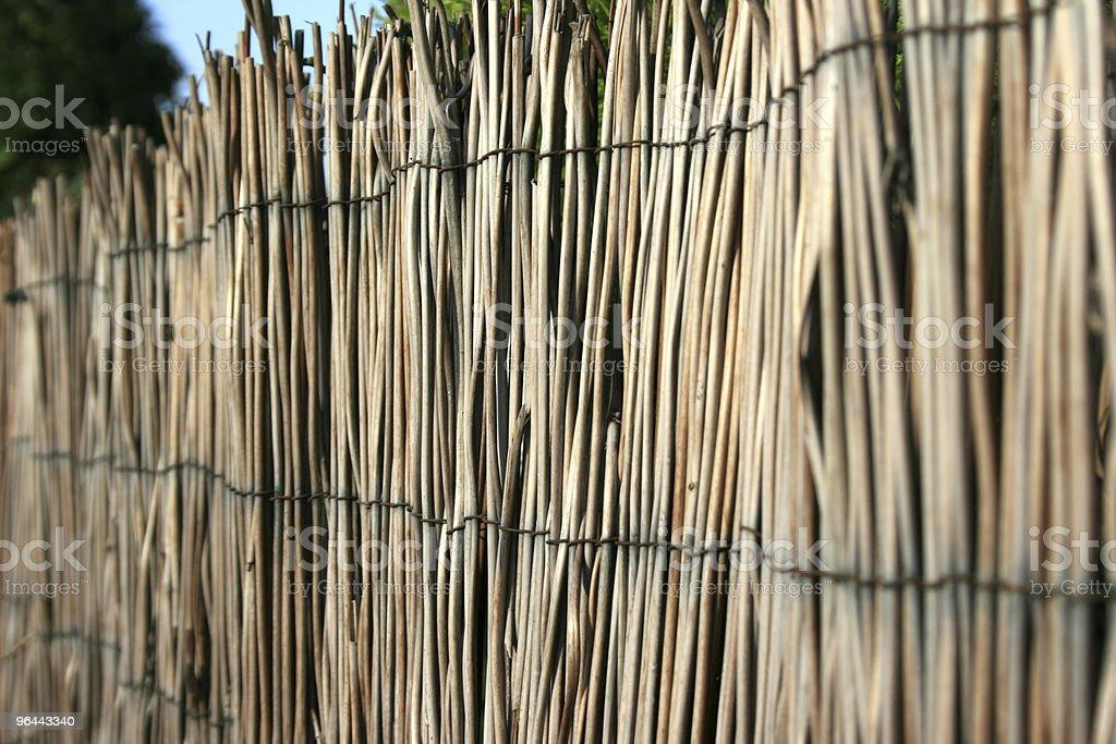 Fundo de bambu - Foto de stock de Arquitetura royalty-free