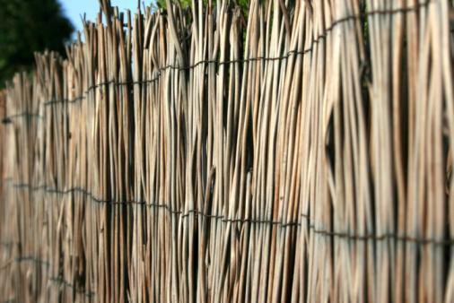 Foto de Fundo De Bambu e mais fotos de stock de Arquitetura