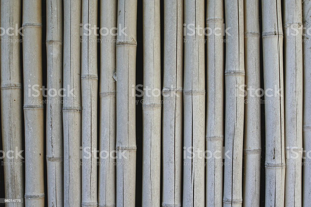 대나무 배경기술 royalty-free 스톡 사진