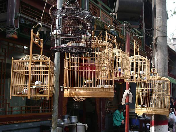 Bamboo Birdcages stock photo