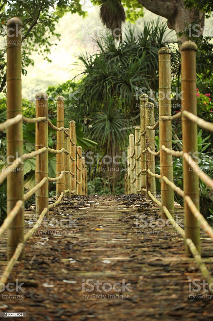 Bamboo bridge royalty-free stock photo