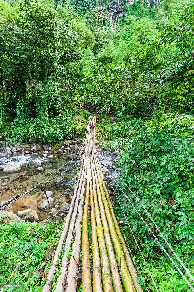 Bamboo Bridge, St Vincent stock photo