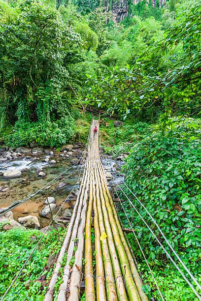 bambus-brücke, st. vincent - st. vincent und die grenadinen stock-fotos und bilder