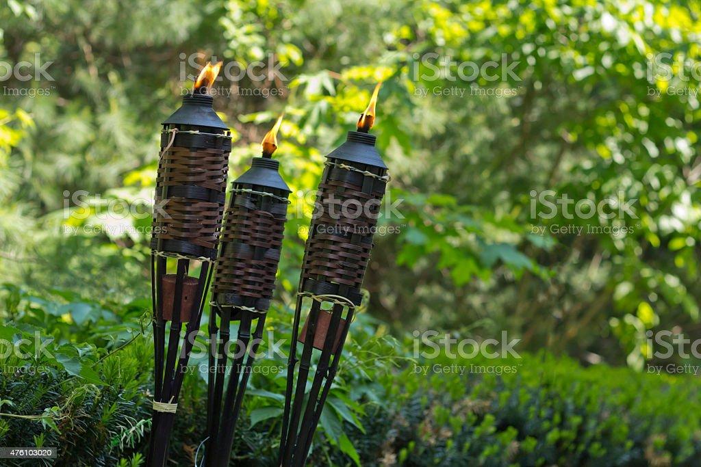 Bamboo Citronella Torch stock photo