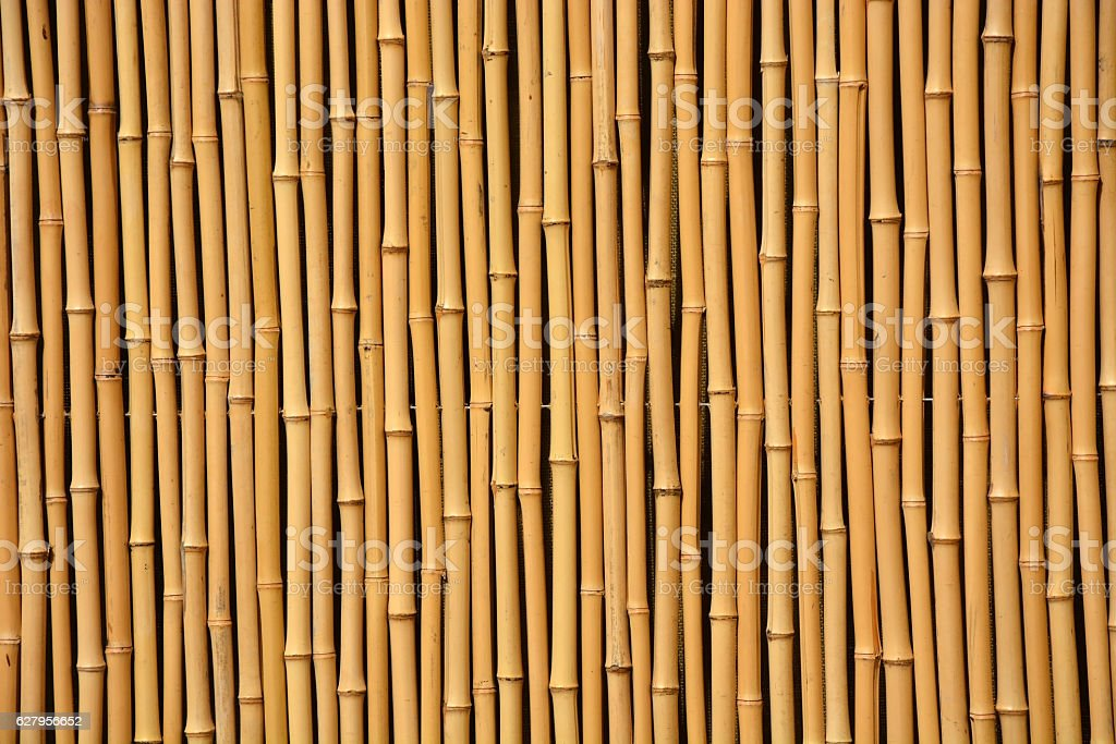 Bamboo fence as a background stock photo
