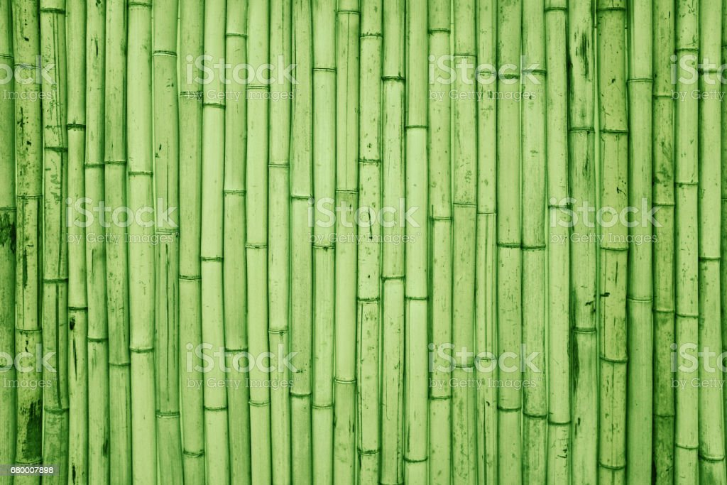 Bamboo fence background textured stock photo