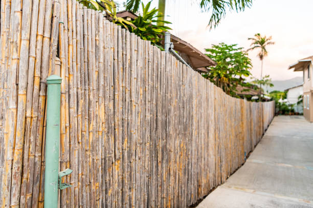 Bamboo fence in a residential neighborhood on a tropical island. stock photo