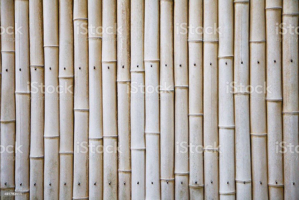 Bambù parete - foto stock