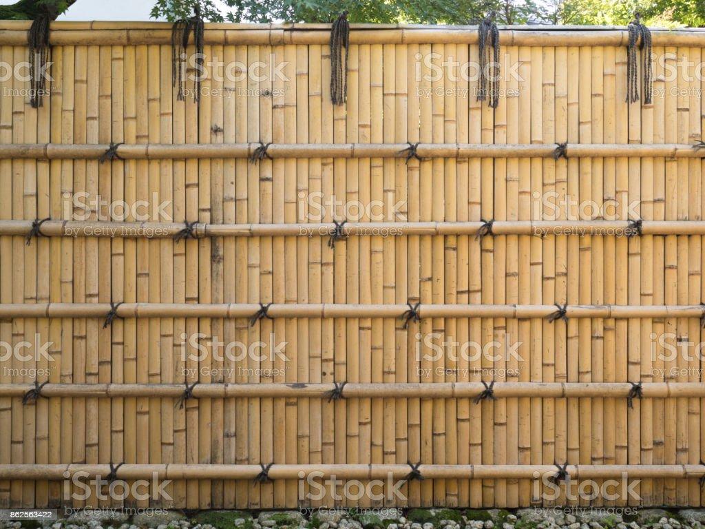 Bamboo fence stock photo