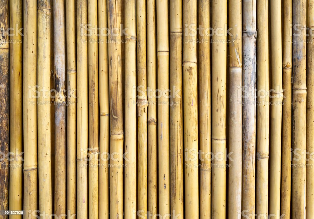 Bamboo fence texture background stock photo