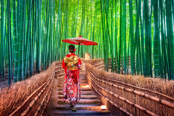 Bamboo Forest. Asian woman wearing japanese traditional kimono at Bamboo Forest in Kyoto, Japan. stock photo