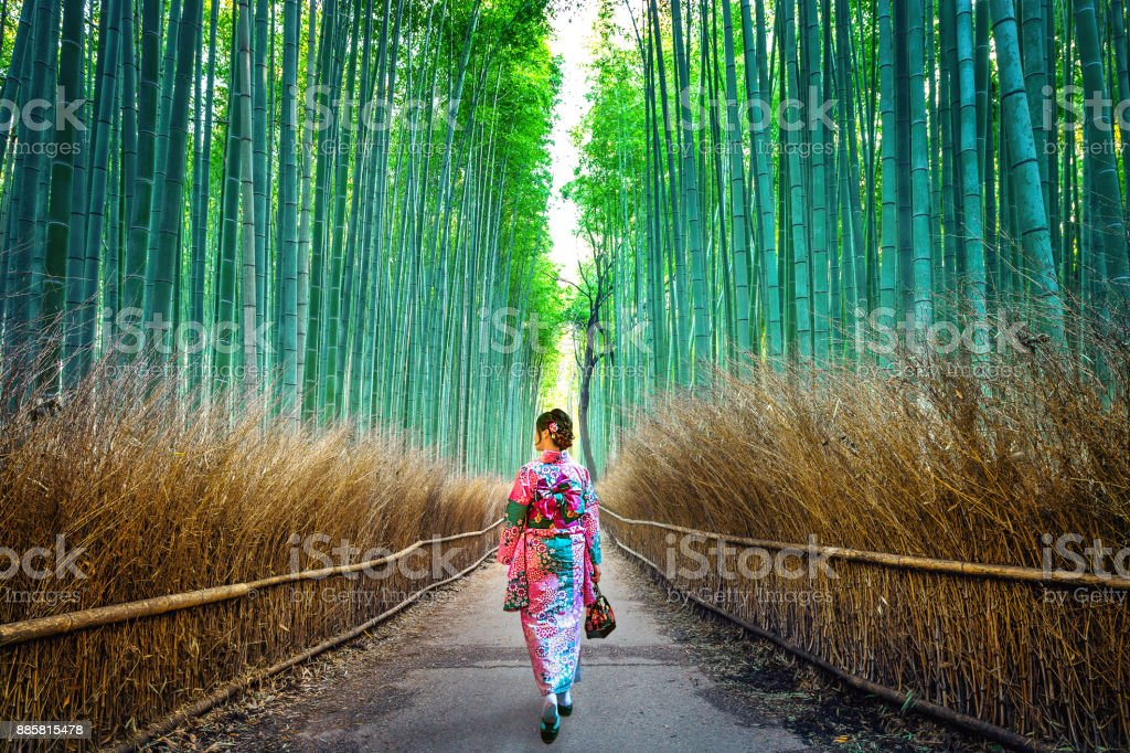 Bamboo Forest. Asian woman wearing japanese traditional kimono at Bamboo Forest in Kyoto, Japan. - foto stock