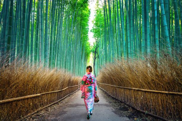 bosque de bambú. asia mujer vestida con kimono tradicional japonés en el bosque de bambú en kyoto, japón. - kyoto fotografías e imágenes de stock