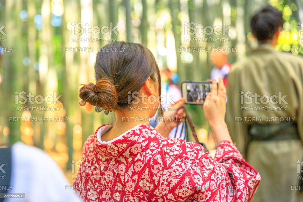 Bamboo Forest picture stock photo