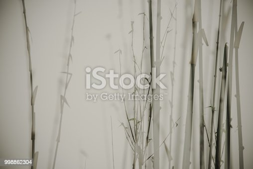 Real natural bamboo forest take multiple exposure, One-time imaging, Shot with Nikon D810