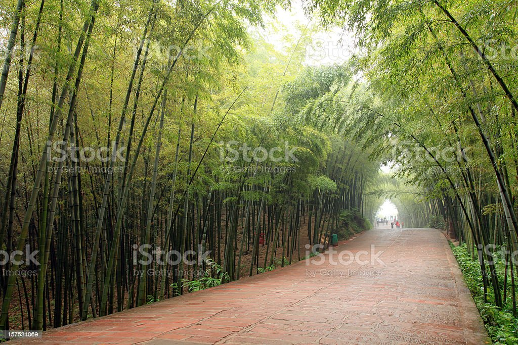 Bamboo Forrest and Red Sand Stone Path royalty-free stock photo