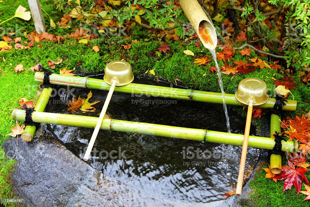 bamboo fountain in japanese temple stock photo