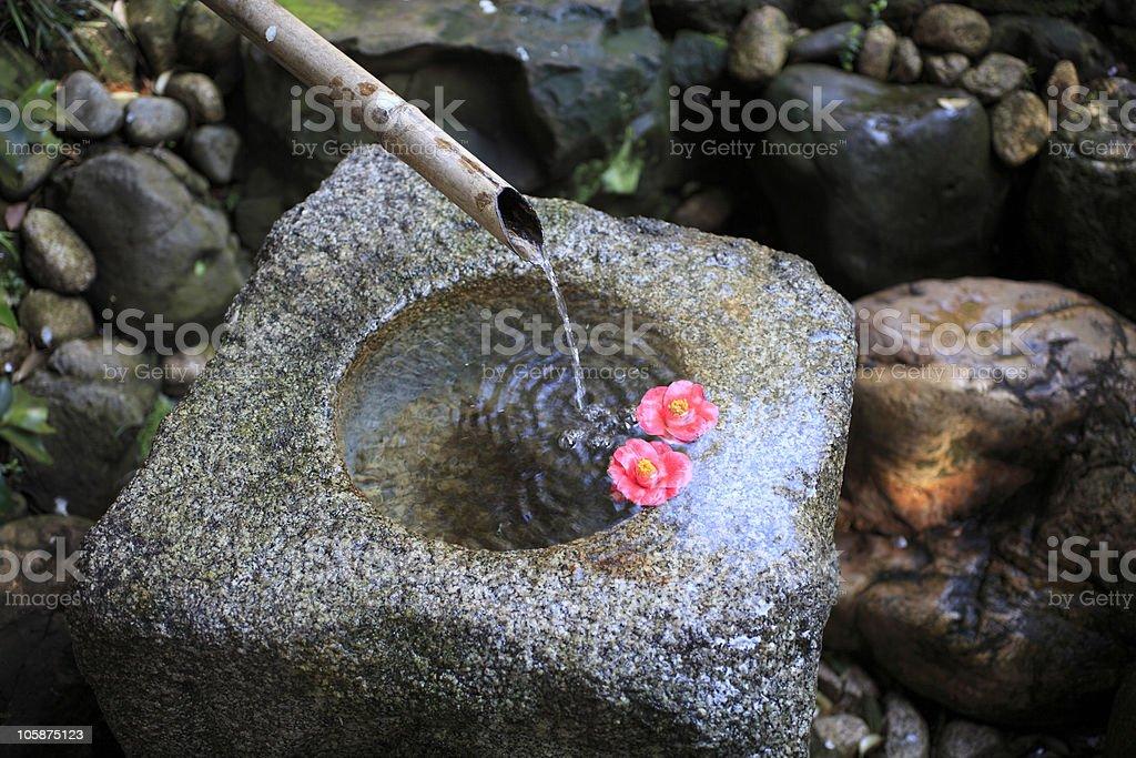 Bamboo Fountain royalty-free stock photo