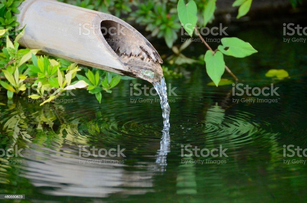 Bamboo fountain stock photo