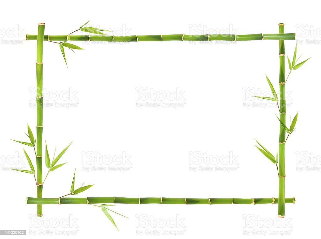 Bamboo frames leaves stock photo
