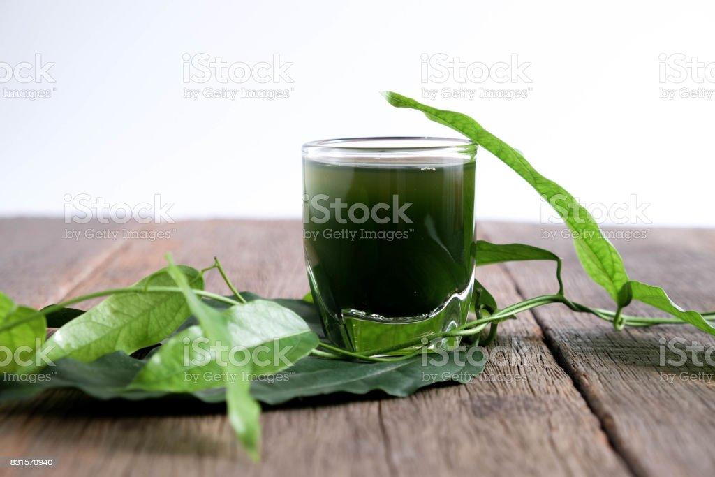 Bamboo grass, bai-ya-nang juice  . (Name spelled as Thailand) Tiliacora triandra stock photo