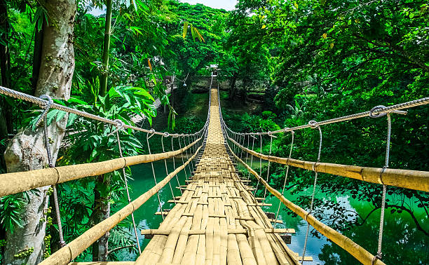 Bamboo hanging bridge over river in tropic forest Bamboo pedestrian hanging bridge over river in tropical forest, Bohol, Philippines, Southeast Asia footbridge stock pictures, royalty-free photos & images