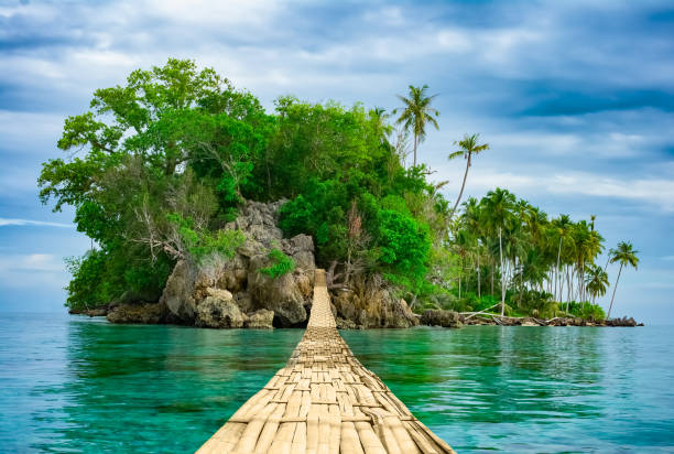 Bamboo hanging bridge over sea to tropical island stock photo