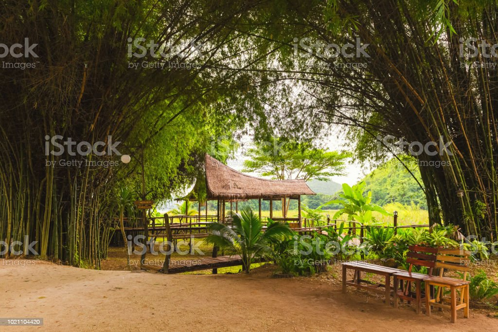 Bamboo hut and bamboo bridge with the glass green field and mountain background stock photo