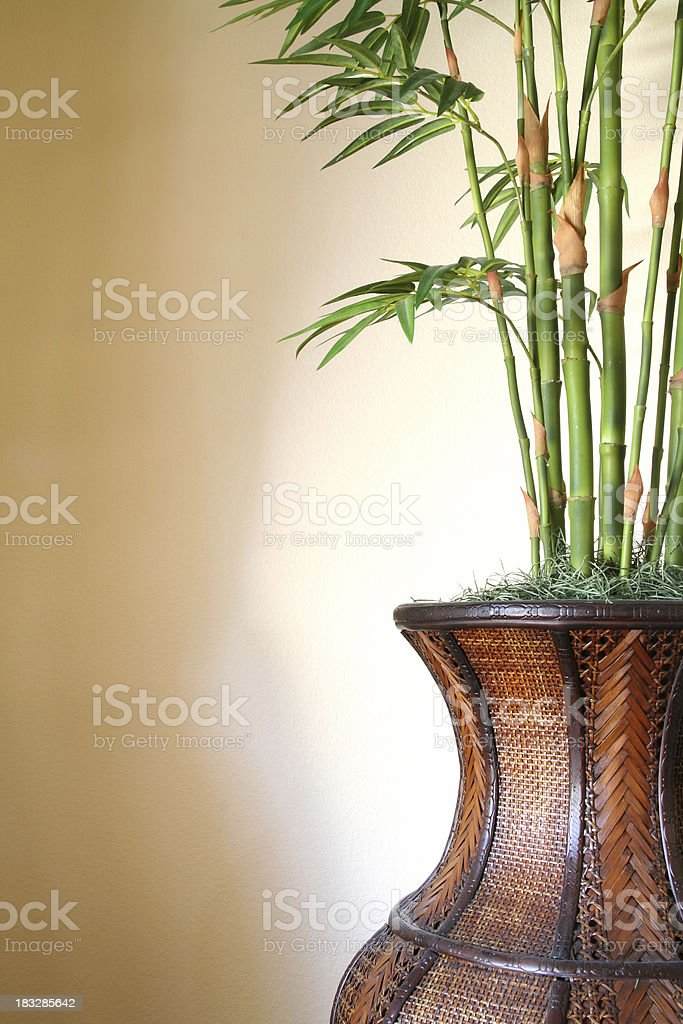 Bamboo in Basket royalty-free stock photo