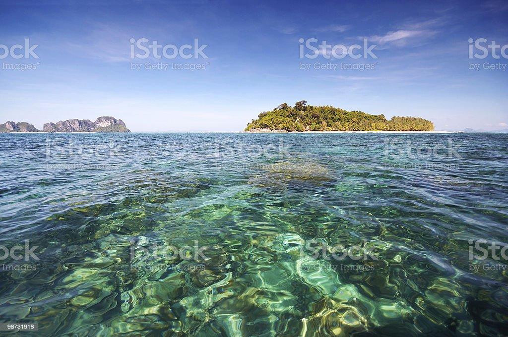 Bamboo Island Lizenzfreies stock-foto