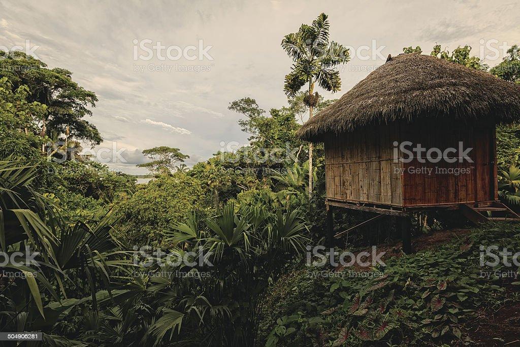 Bamboo Lodge In National Park Yasuni stock photo