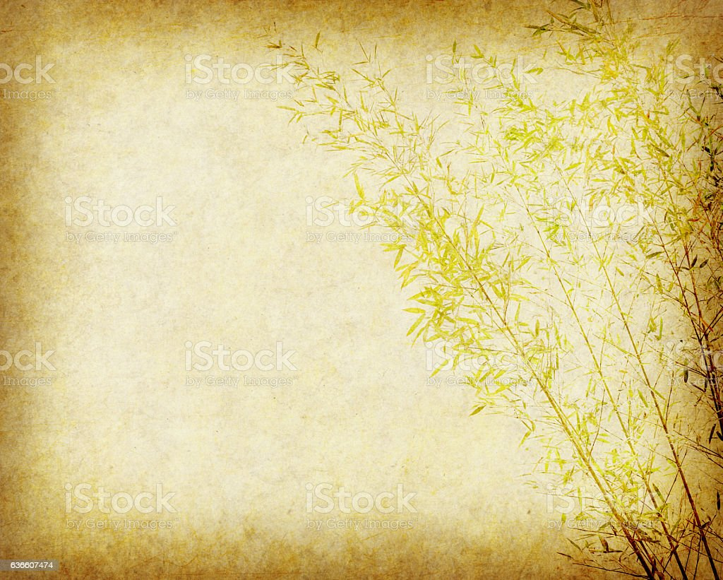 Bamboo On Old Grunge Paper Texture Background Royalty Free Stock Photo