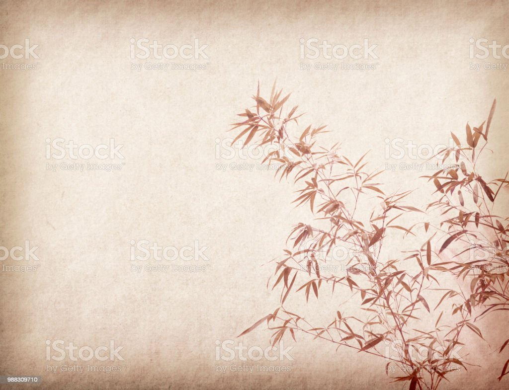 Bamboo on old grunge paper texture background stock photo