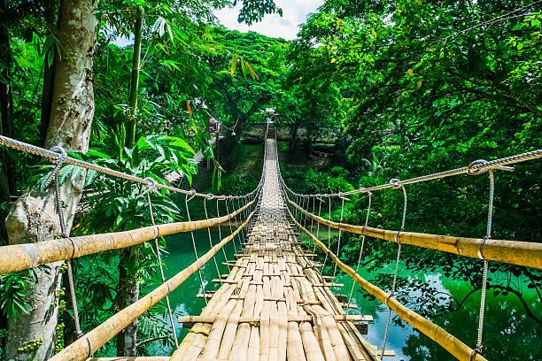 pont suspendu piétonnier de bambou sur la rivière - passerelle pont photos et images de collection