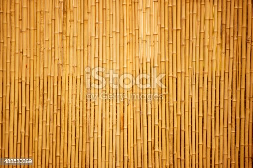 Row of bamboo canes, full frame, canon 1Ds mark III
