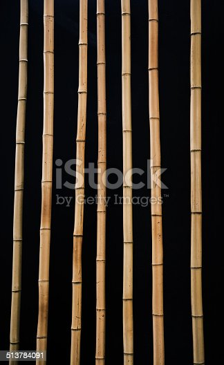 Dried timber yellow bamboo sticks on black background.