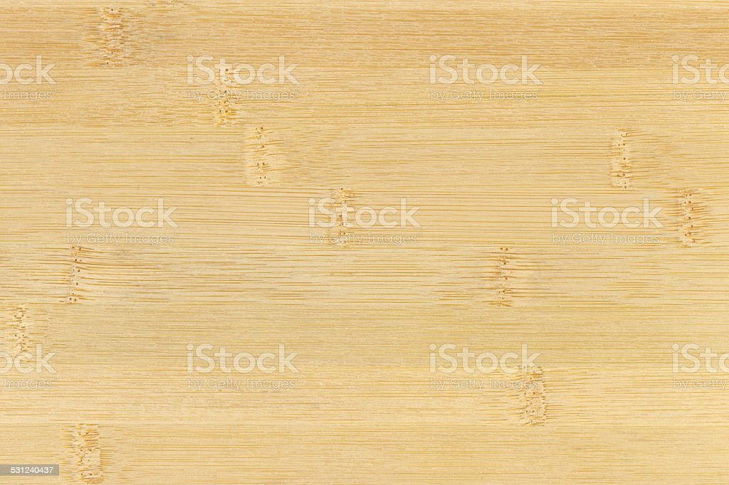 Bamboo. stock photo