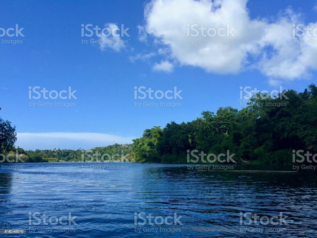 Bamboo rafting on the beautiful tropical Rio Grande river on the sunny island of Jamaica (Caribbean) on a summer day with cloudy blue sky stock photo