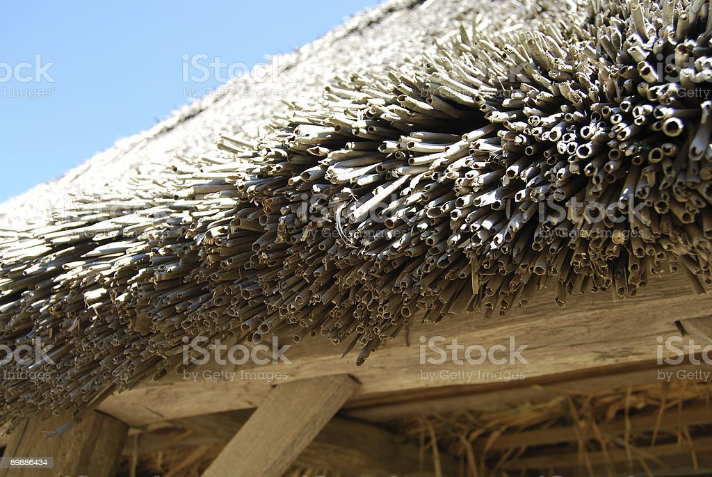 Bamboo Roof royalty free stockfoto
