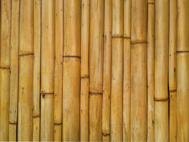 Bamboo roof seamless texture stock photo