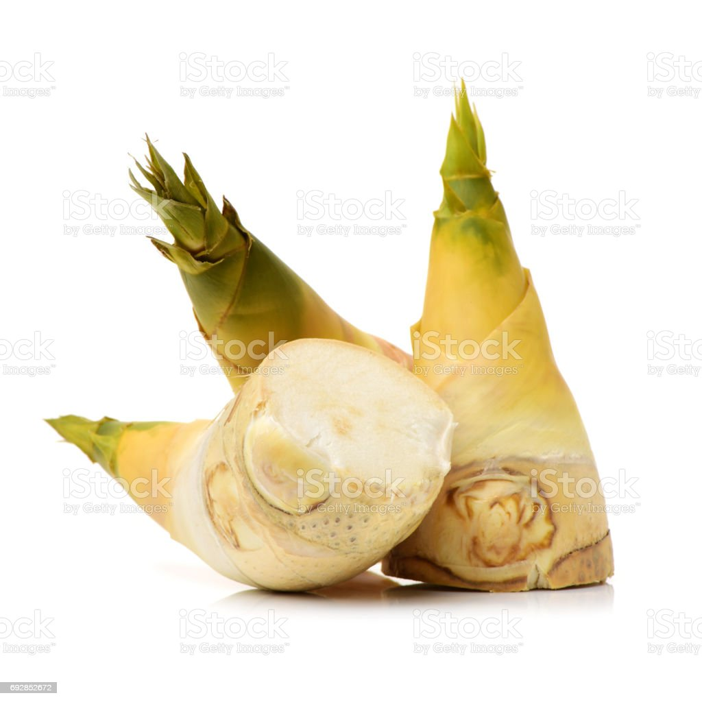 Bamboo shoots on the white background stock photo