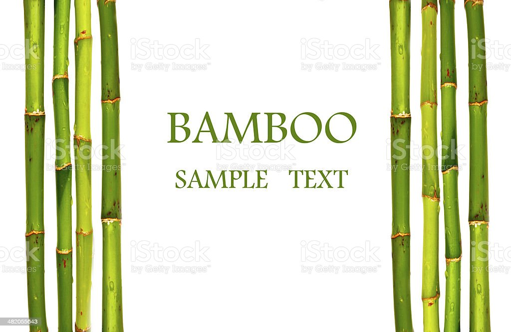 Bamboo sticks isolated stock photo