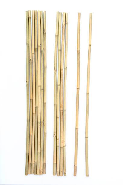 Bâtons en bambou - Photo