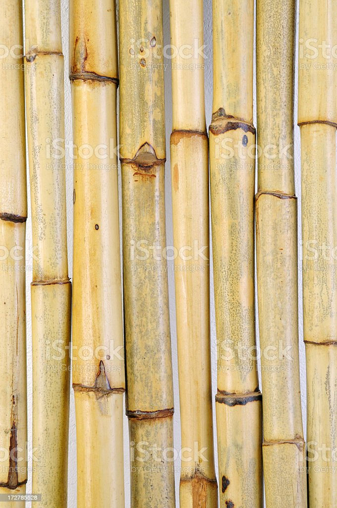 Bamboo Sticks royalty-free stock photo