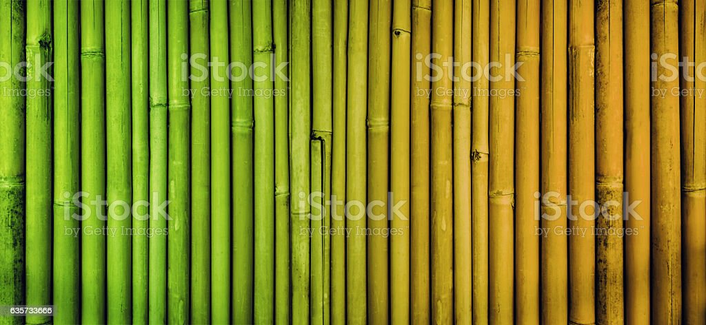 Bamboo texture background, faded bamboo fence wall stock photo