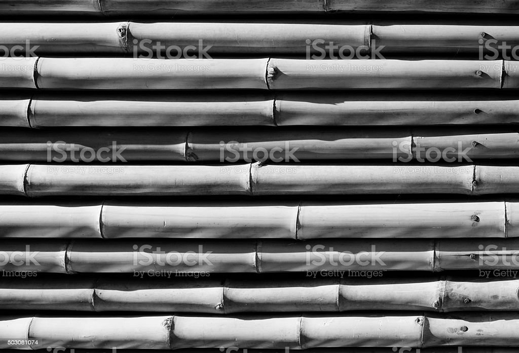 bamboo texture in black and white stock photo