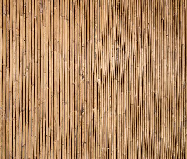 Textura de bambú - foto de stock